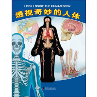 有趣的透视立体书--透视奇妙的人体(不一样的精装立体体验书)