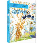 2016中国好书 《少年文艺》金榜名家书系-布罗镇的邮递员