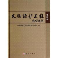 文物保护工程典型案例(第4辑) 王立平