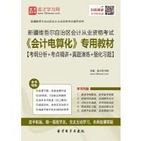 新疆维吾尔自治区会计从业资格考试《会计电算化》专用教材【考纲分析+考点精讲+真题演练+强化习题】