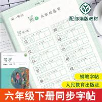 写字教材六年级下册语文字帖 人教部编版练字帖钢笔字