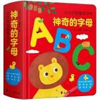 神奇的字母 精装幼儿有趣的创意学习 0-3-6岁宝宝书早教启蒙翻翻看 ABC绘本儿童认知翻翻书 婴儿图书3D立体洞洞书2