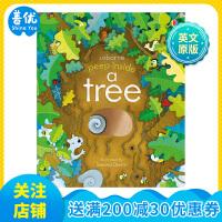 【预订】Usborne Peep Inside a Tree 偷偷看里面:大树 英文原版 儿童纸板洞洞书 科普启蒙 适合3-6岁