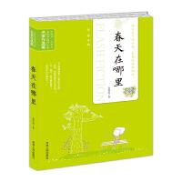 当代中国闪小说名家作品集-春天在哪里
