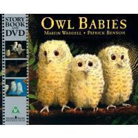 【现货】英文原版 猫头鹰宝宝(书+DVD) Owl Babies (Book & DVD) 有声影像书 廖彩杏书单 9