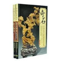 中国艺术品收藏鉴赏全集-奇石(套装全2册 彩图铜版纸精装)