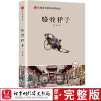 骆驼祥子 北京时代华文书局七年级下册必读经典书目老舍当当自营原著无删减