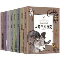 西顿动物故事 全套8册6-12岁儿童百科动物大自然科普动物文学故事