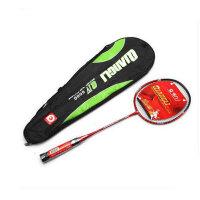 强力 专业羽毛球拍 碳铝 控球型 成人业余初级训练拍 单支装 6000