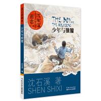 沈石溪画本(第二辑)少年与狼獾