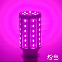粉色紫色灯泡led氛围灯卧室浪漫小夜灯螺口节能情调装饰彩色灯泡 【E27螺口】《粉光灯》色彩纯正 节能超亮不伤眼