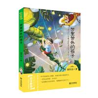 中华原创幻想儿童文学大系:梦里梦外的孩子