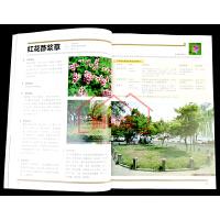 地被植物景观 植物造景丛书 周厚高 主编 常见园林植物配置 绿化造景 草本 灌木 藤本 矮生竹类 地被植物与景观设计书籍