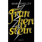 英文原版 Vintage Magic: Frankenstein 科学怪人