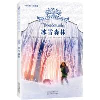 摆渡船当代世界儿童文学金奖书系冰雪森林
