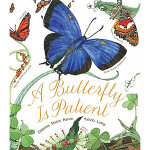 A Butterfly Is Patient 有耐心的蝴蝶 儿童英文科普读物绘本