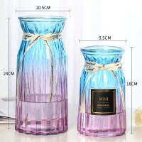 【汲吉香家居】【二件套】创意玻璃花瓶透明水培富贵竹玫瑰花瓶客厅装饰插花摆件 大