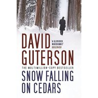 Snow Fallin on Cedars