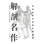 西方绘画技法经典教程:解剖名作 世界名作中的美术解剖图