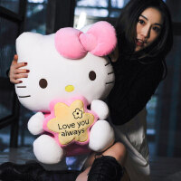 猫玩偶毛绒玩具公仔布娃娃情人节礼物送女友 抖音