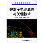 化学电源技术丛书--锂离子电池原理与关键技术(后石油时代替代能源)