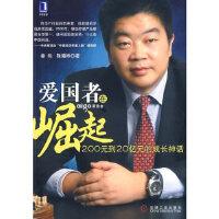 【新书店正版】爱国者在崛起 姜伟,陈曦桦 机械工业出版社
