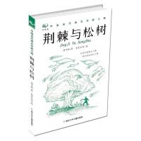 回音壁 中国当代寓言作家小辑:荆棘与松树