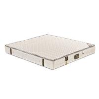 床垫 1.5m床 经济型1.8米乳胶软硬两用双人厚棕垫席梦思弹簧床垫