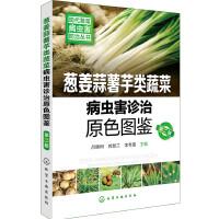 现代蔬菜病虫害防治丛书--葱姜蒜薯芋类蔬菜病虫害诊治原色图鉴(第二版)