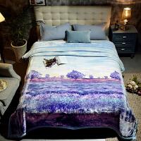 家纺2017秋冬季新款棉被子双层云毯加厚毛毯被子双人保暖婚庆欧式盖毯子床上用品 200cmx230cm