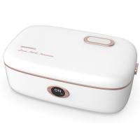 大宇DY-FH101电热饭盒可插电加热保温自热蒸热饭菜神器电饭锅煲小上班族
