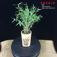 竹子盆栽植物室内米竹姬翠竹盆景凤尾竹四季常青绿植净化空气 带盆栽好