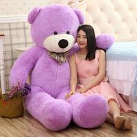毛绒泰迪熊pp棉公仔紫色布娃娃玩偶超大2米抱抱熊生日礼物女