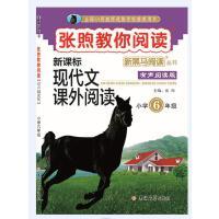 新黑马阅读丛书 张煦教你阅读. 小学六年级