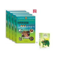 全世界优等生都在做的2000个思维游戏(中国青少年成长必读书)精装4册 +(昆虫记)带礼盒 带答案 逻辑 思维技巧 学