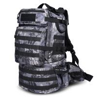 户外登山包男女旅行背包大容量40L双肩包运动书包迷彩包徒步背囊 莽纹