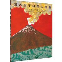 富士山大喷发[日]加古里子长江少年儿童出版社有限公司9787556031344