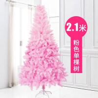 家用1.5米1.8米马卡龙樱花树ins布置圣诞节装饰品