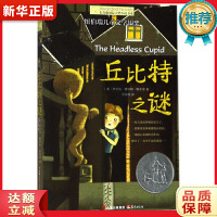丘比特之谜,晨光出版社9787541493034【新华书店,正版现货】