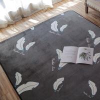 北欧风格网红大地毯满铺客厅茶几地垫可爱卧室房间床边垫独特定制 深灰色 羽毛(深灰)