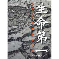 生命第一―5 12大地震现场纪实,何建明,浙江文艺出版社9787533927196