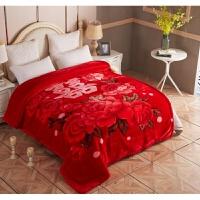 婚庆毛毯双层加厚单双人珊瑚绒法莱绒盖毯春秋冬季被子宿舍 红色 喜上加喜