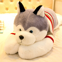【支持礼品卡】布娃娃大号熊可爱毛绒玩具狗狗女生睡觉抱枕x6b