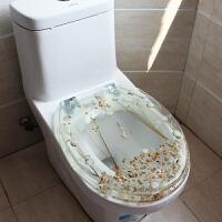 厕所盖板OVU型 通用加厚老式马桶盖坐便盖树脂彩色透明不锈钢快拆