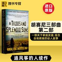 灿烂千阳 英文原版小说 A Thousand Splendid Suns追风筝的人The Kite Runner群山回唱