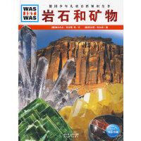 什么是什么:岩石和矿物(精装)