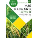 水稻病虫害绿色防控彩色图谱