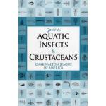 【预订】Guide to Aquatic Insects and Crustaceans