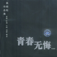 青春无悔高晓松作品集珍藏版(CD)
