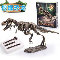 霸王龙DIY挖掘发现益智玩具礼物考古挖掘恐龙骨架化石